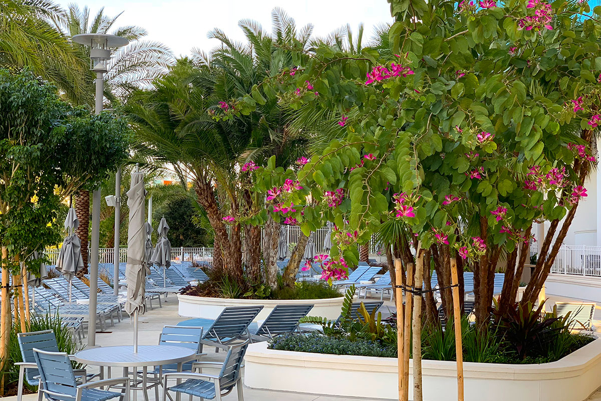 Colorful plantings weave throughout the water amenity at Aventura Hotel.