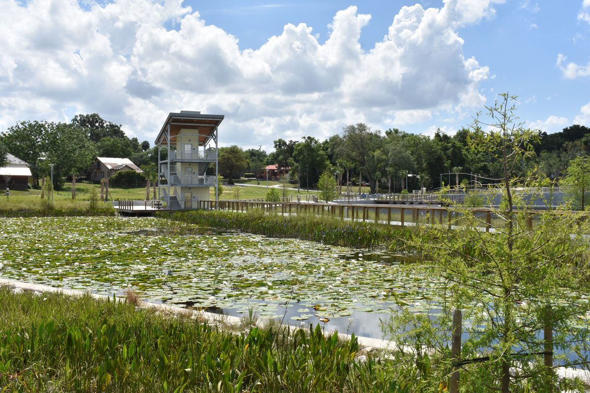 View of Victory Pointe Park and aquatic plants.